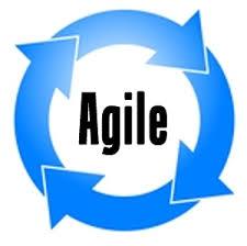 Agile startups